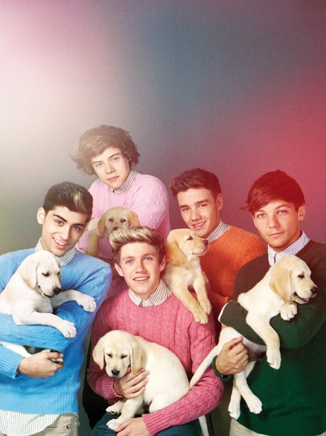 One Direction holding puppies on Wonderland Magazine