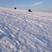Image 8: North East Snowed Under