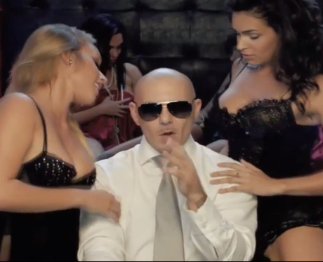 pitbull don't stop the party