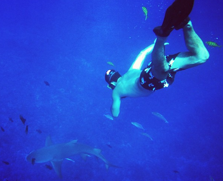Example diving