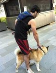 Akita-type-breed dog and owner