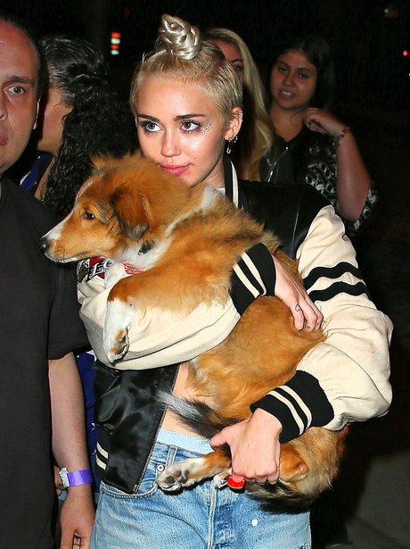 Miley Cyrus with het pet dog