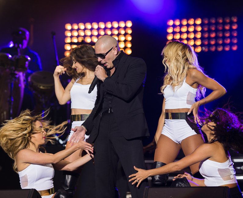 Pitbull on Stage at Fusion Festival