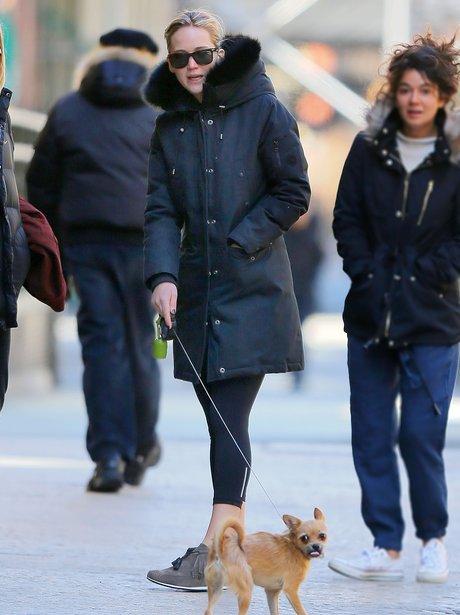 Jennifer Lawrence dog walking