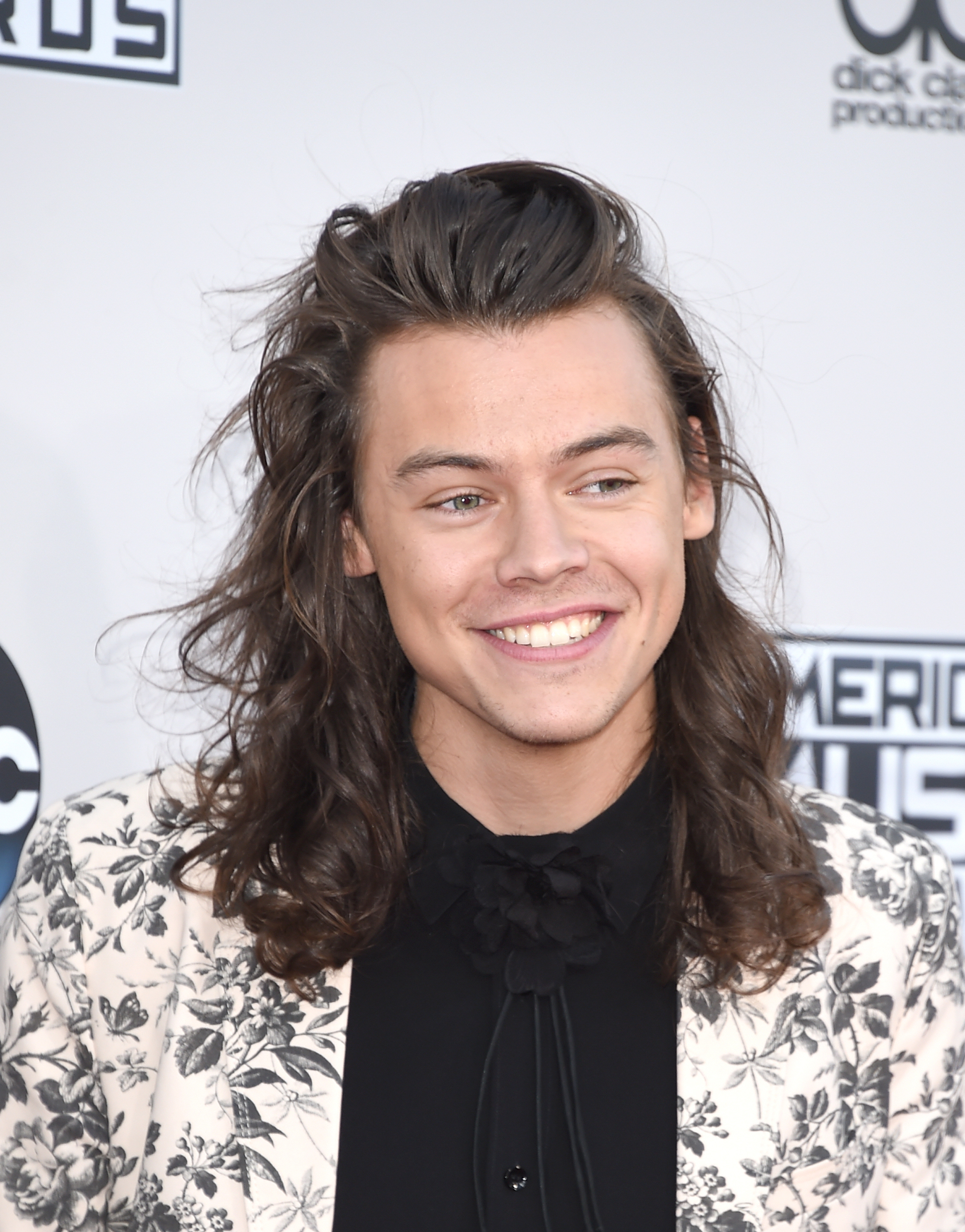 Harry Styles 2015