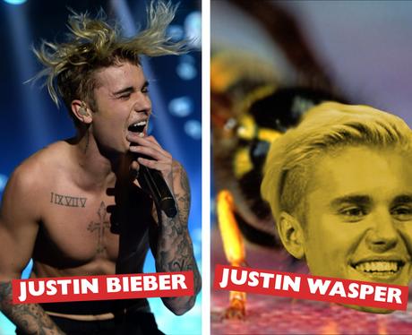 Celebrity Names Puns - Justin Bieber