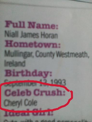 Niall Fancies Cheryl