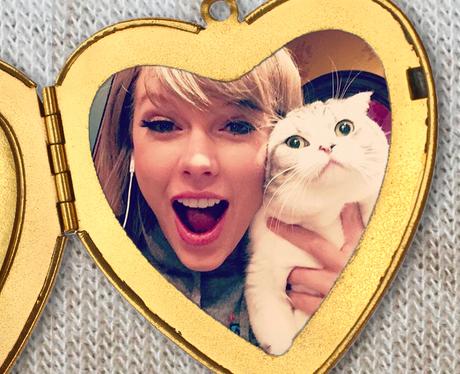 Taylor Swift Locket cat photo