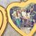 Image 6: Taylor Swift Locket 5