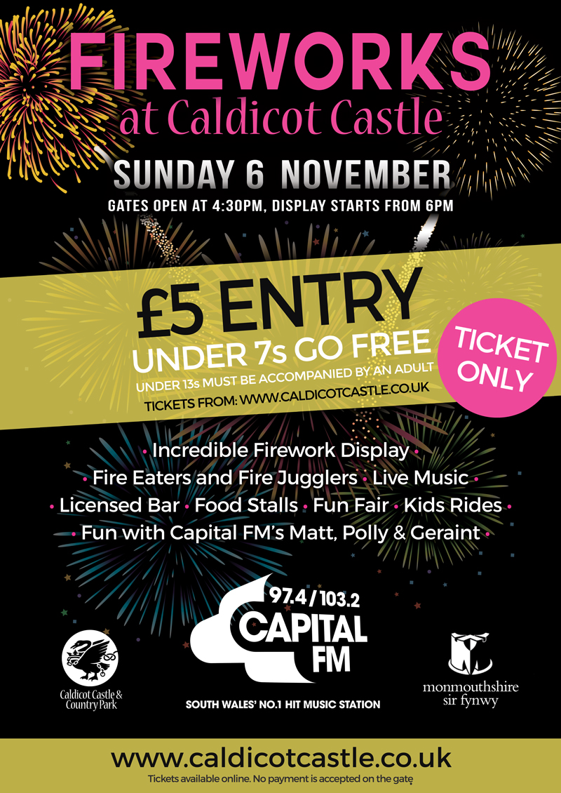 Fireworks at Caldicot Castle Sunday 6th November