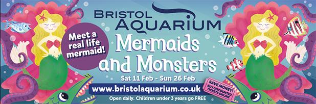 bristol aquarium image