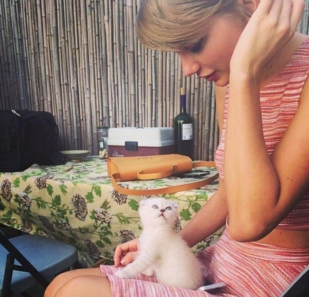 Taylor Swift old school Instagrams