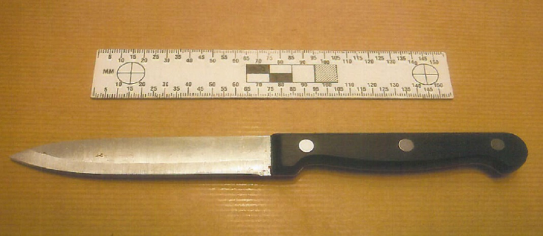 Dominic Palmer, Knife, stabbing,