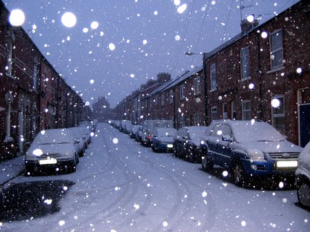 Snowy pictures