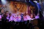 Image 9: narnia