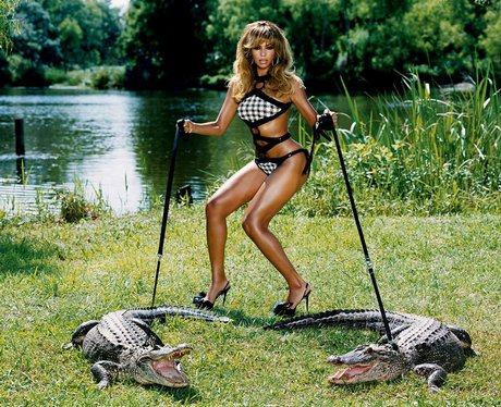 beyonce and crocodiles