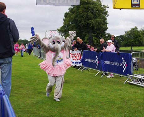 Race For Life - Kedlestone Hall