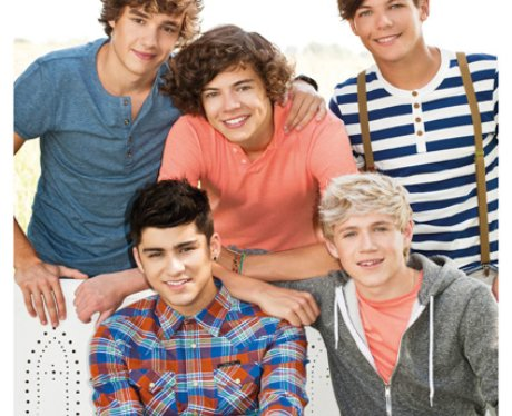 One Direction 2012 Calendar