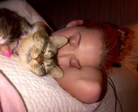 Katy Perry sleeps next to her kitten