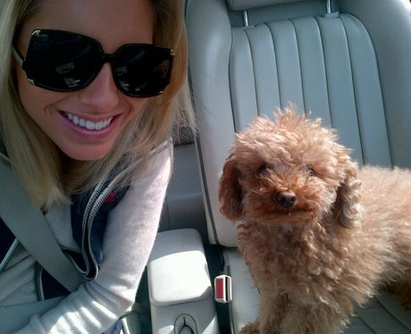 Mollie King with her dog Alfie on the train