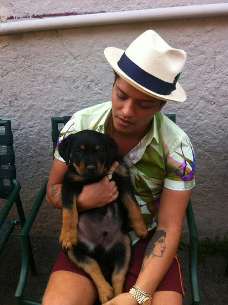 Bruno Mars and his pet dog