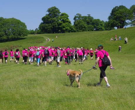 Petworth House Ribbon Walk