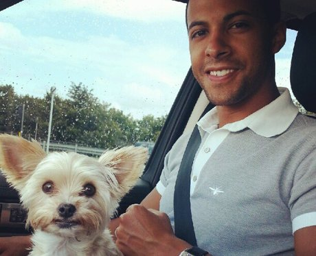 Marvin Humes with Rochelle's dog