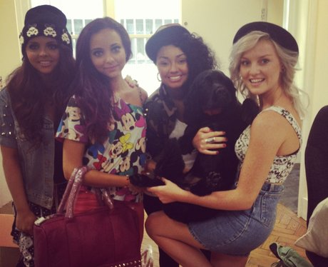 Little Mix with a dog