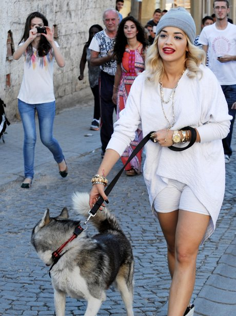 Rita Ora walking a dog on video set.