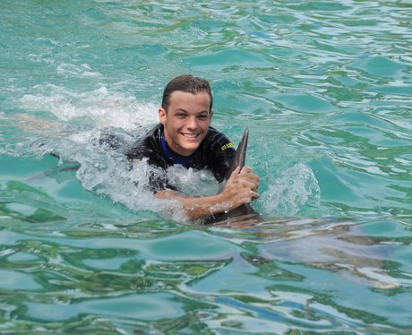 Louis Tomlinson swimming with dolphins
