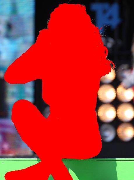 Rita Ora Silhouette