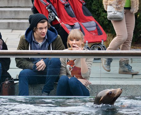 Harry Styles and Taylor Swift at the zoo with sea lion