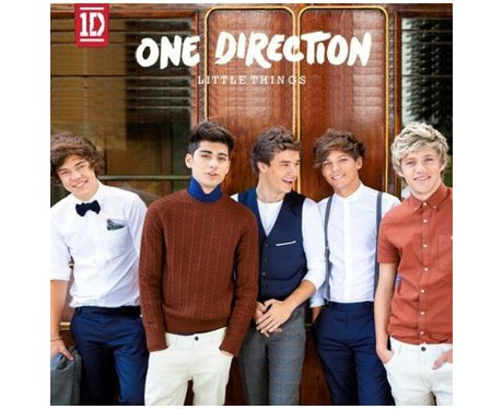One Direction- 'Little Things'