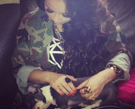 Jesy Nelson holding a dog