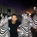 Image 5: Calvin Harris with pretend zebras