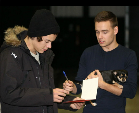 Liam Payne holding a puppy in tour rehearsasls