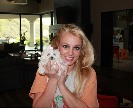 Britney Spears with her pet puppy