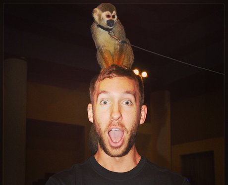 Calvin Harris with a monkey on his head