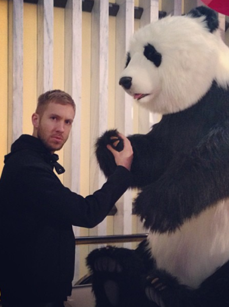 Calvin Harris with a panda