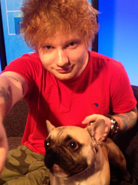 Ed Sheeran with a dog while out touring