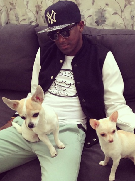 Labrinth hands out with two little dogs