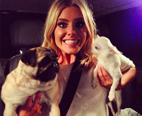 Mollie King and her dogs