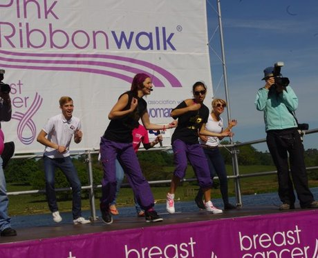 Pink Ribbonwalk - 2013