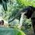 Image 5: Katy Perry 'Roar'