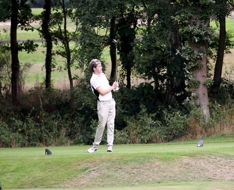 Niall Horan playing gholf
