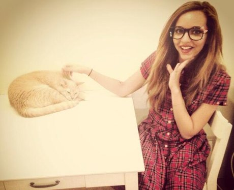 Jade Thirlwall at the Tokyo Cat Cafe