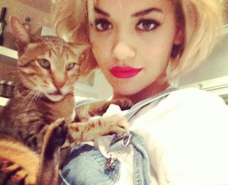 Rita Ora and Cat
