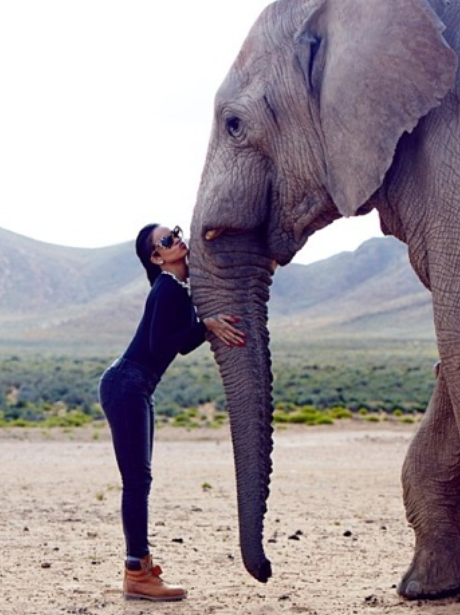 Rihanna and Elephant