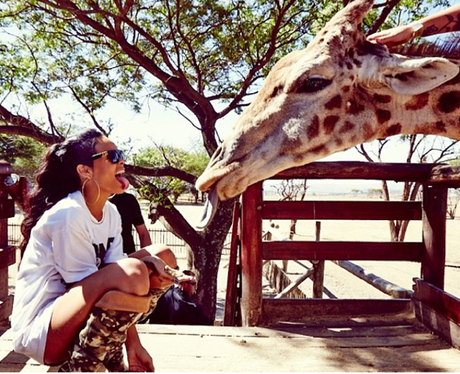 Rihanna at the zoo