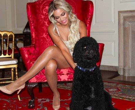 Beyonce With Dog Tumblr